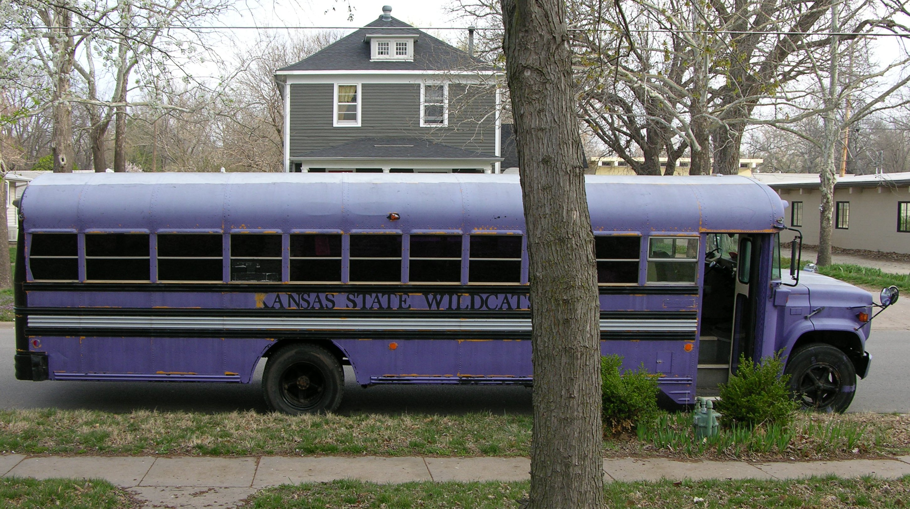 cd13a328d3 Schoolbus covered in purple latex house paint
