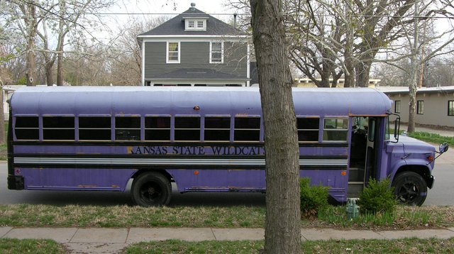 Schoolbus covered in purple latex house paint