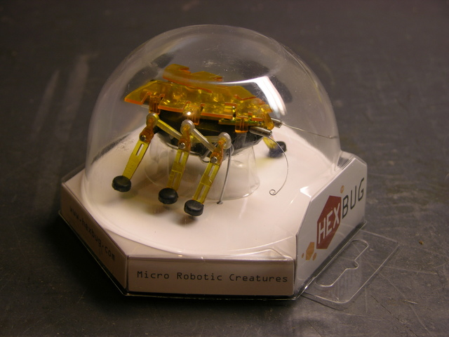 Hexbug in plastic case