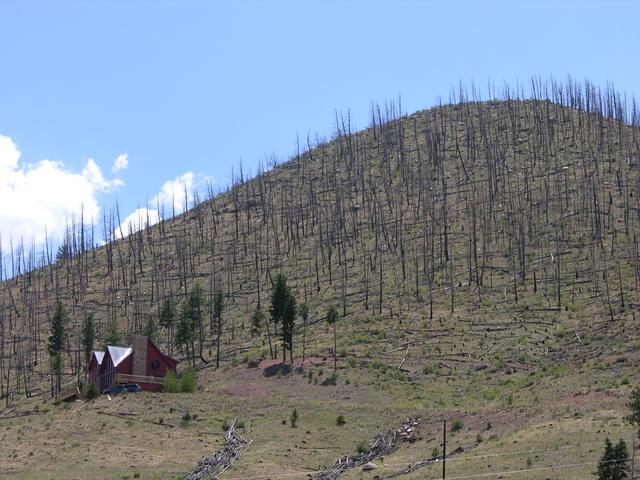North Fork, Colorado burn area